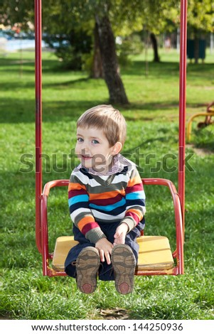 Happy and cheerful boy goes for a drive on a swing
