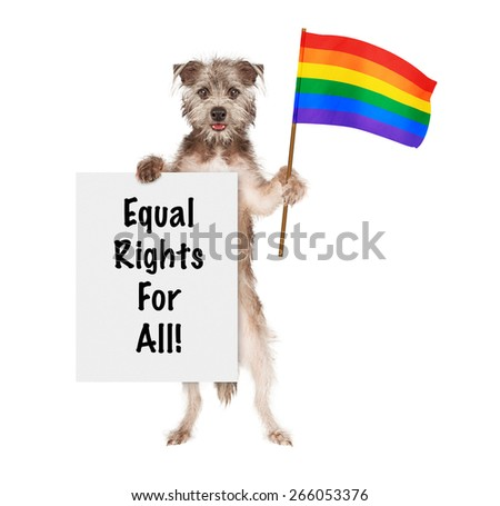 Happy and smiling dog carrying a sign saying Equal Rights For All and a rainbow color flag to support gay rights - stock photo