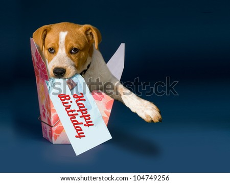 Happy Birthday in a box with room for your type. - stock photo