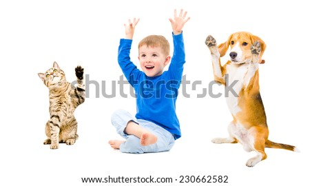 Happy boy, dog and cat together isolated on white background - stock photo