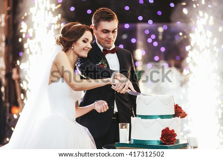 Happy bride and groom cut the wedding cake in the front of fireworks - stock photo