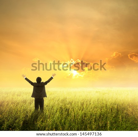Happy business man in green fields and sunset - stock photo