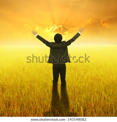 Happy Business Man standing in Yellow  rice field and sunset - stock photo