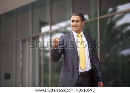 Happy businessman celebrating his success - stock photo