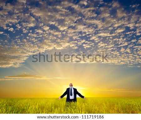 happy businessman relaxing on field before the sunset - stock photo
