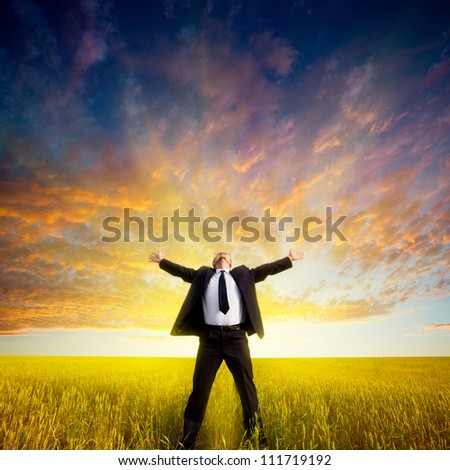 happy businessman standing on field before the sunset - stock photo