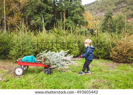 Happy Child Pulling a Cart with the Fir Tree for Christmas Outdoors