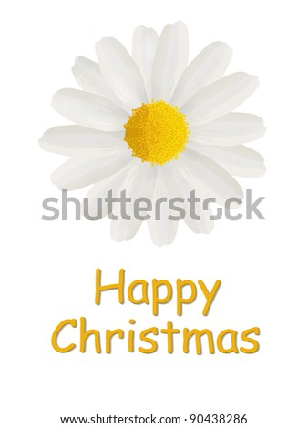 Happy Christmas card with a daisy isolated on a white background - stock photo