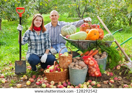 Happy couple with  harvested vegetables in garden - stock photo