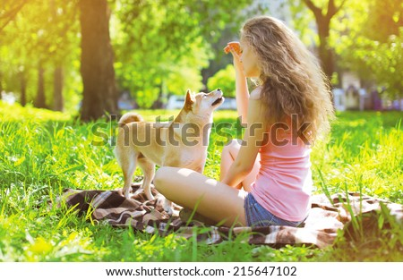 Happy dog and owner in summer park - stock photo