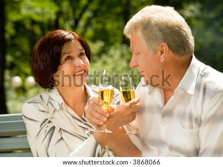 Happy elderly couple celebrating anniversary, life event or holiday with champagne, outdoors - stock photo