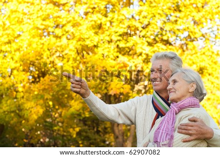 happy elderly couple in a autumn park - stock photo