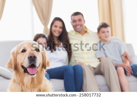 Happy family of four looking at Golden Retriever in living room - stock photo