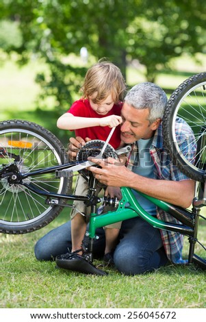 Happy father and his son fixing a bike on a sunny day - stock photo