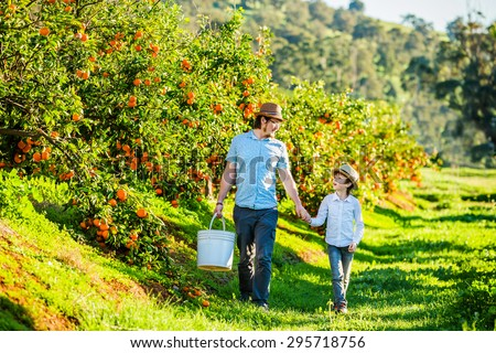 Happy father with his young son visiting citrus farm to pick oranges, lemons and mandarins. Joyful quality family time on summer holidays - stock photo
