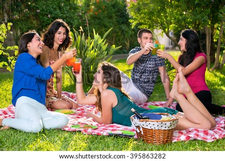 Happy friends toasting on a sunny day in the park while relaxing on a red and white checkered picnic blanket - stock photo