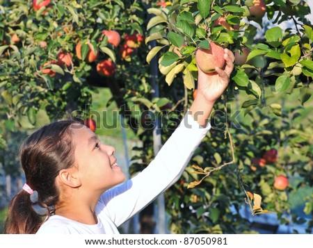 happy girl in apple garden. - stock photo