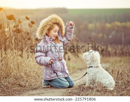 happy girl with her dog breed White Terrier walking in a field in autumn - stock photo