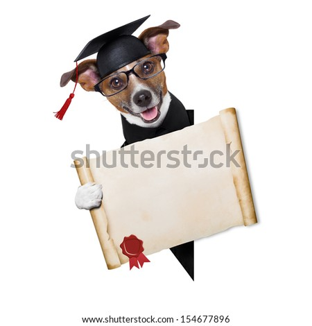 happy graduate dog holding a big diploma beside a banner - stock photo