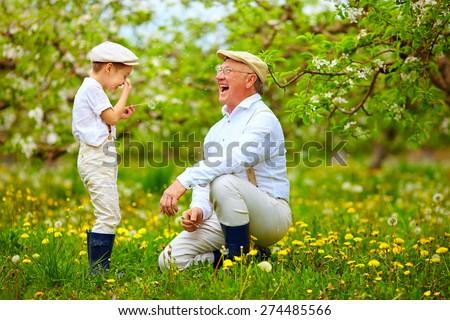 happy grandpa with grandson blowing dandelions in spring garden - stock photo