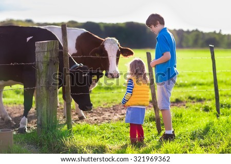 Happy kids feeding cows on a farm. Little girl and school age boy feed cow on a country field in summer. Farmer children play with animals. Child and animal friendship. Family fun in the countryside. - stock photo