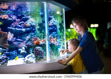 Happy laughing boy and his adorable toddler sister, cute little curly girl watching fishes in a tropical aquarium with coral reef wild life having fun together on a day trip to a modern city zoo - stock photo