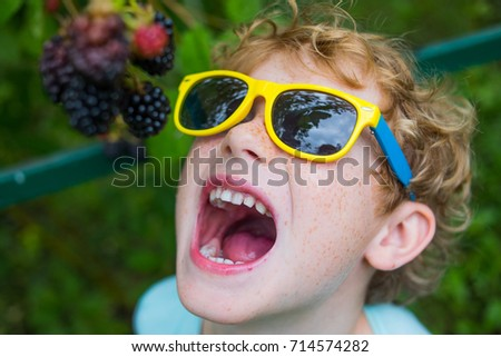 happy laughing boy in the background of bush blackberries, handsome boy collects a blackberry in the garden, berry harvest, kid eat blackberry, child gardener on a green background, organic products.