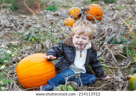 Happy little toddler boy crying on pumpkin patch on cold autumn day, with a lot of pumpkins for halloween or thanksgiving - stock photo