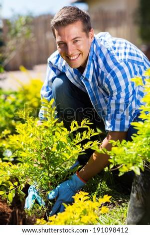 happy man planting shrub in his home garden - stock photo