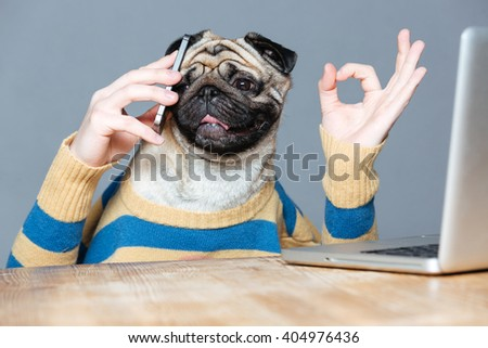 Happy man with pug dog head talking on cell phone and showing ok sign over grey background - stock photo