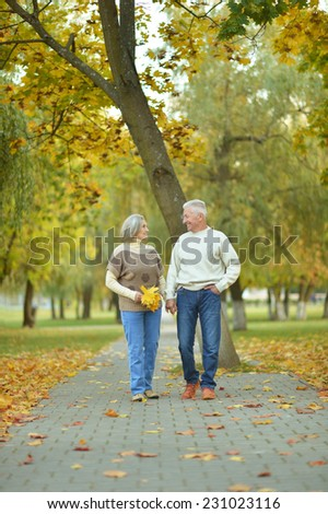 Happy mature couple in the autumn park