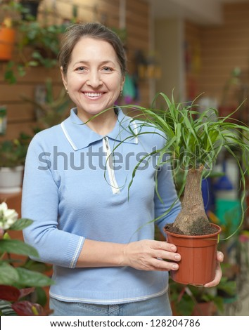 Happy mature woman looks Nolina in pot at flower shop - stock photo