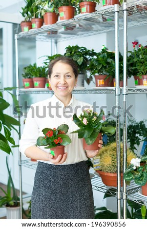 Happy mature woman with kalanchoe in flower store - stock photo