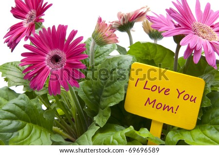 Happy Mothers Day with Flowers and Sign with Text. - stock photo