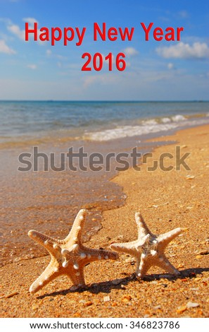 Happy New Year 2016 Two Starfish Ocean - stock photo