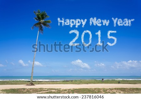 Happy New Year 2015 word cloud in the blue sky - stock photo