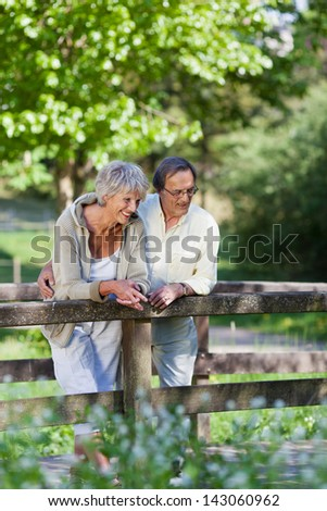 Happy old couple cherishing the great scenic views while standing on a bridge inside a park. - stock photo