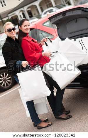 Happy smiling women putting shopping bags into the car  trunk