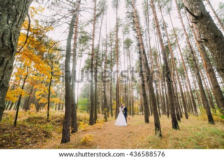 Happy stylish newlyweds posing in the autumn pine forest