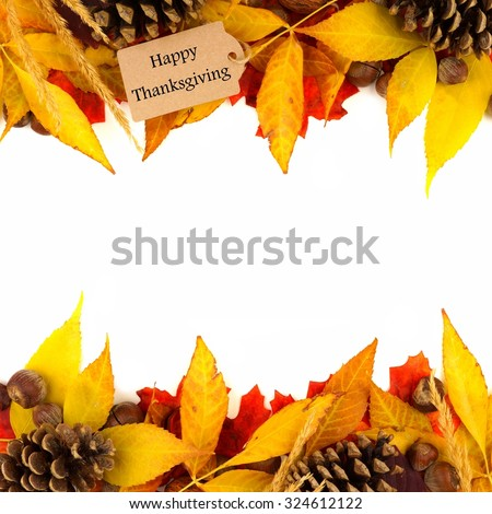 Happy Thanksgiving gift tag with double border of colorful leaves and pine cones isolated on white - stock photo