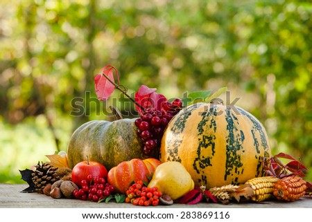Happy Thanksgiving still life. Fruits, nuts and vegetables, fall crop on  the table outdoor - stock photo