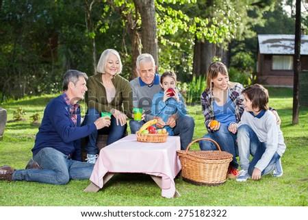 Happy three generation family enjoying healthy picnic in park - stock photo