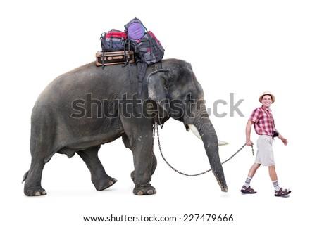 happy tourist walking a elephant, isolated on white background  - stock photo