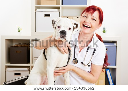 Happy veterinarian with a boxer dog in her clinic