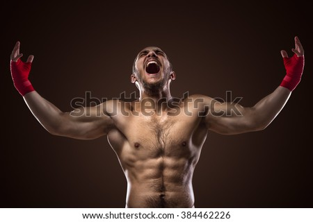 Happy Winning Mixed Martial Arts Fighter With His Arms Raised Up On Ring  - stock photo