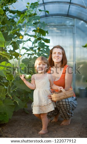 Happy woman and baby girl with cucumber harvest in hothouse - stock photo
