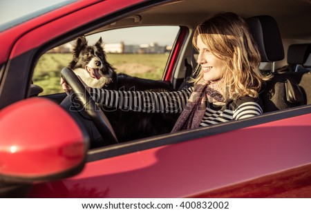 Happy woman driving the car with her border collie dog - stock photo