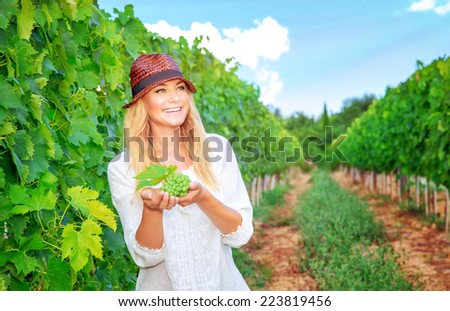 Happy woman on the vineyard, picking fresh ripe grape bunches, tasty sweet fruits, autumn harvest season, wine making concept - stock photo