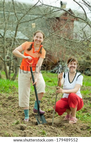 Happy women planting fruit tree at orchard  in spring