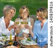 happy women saying cheers with white wine at the garden party - stock photo